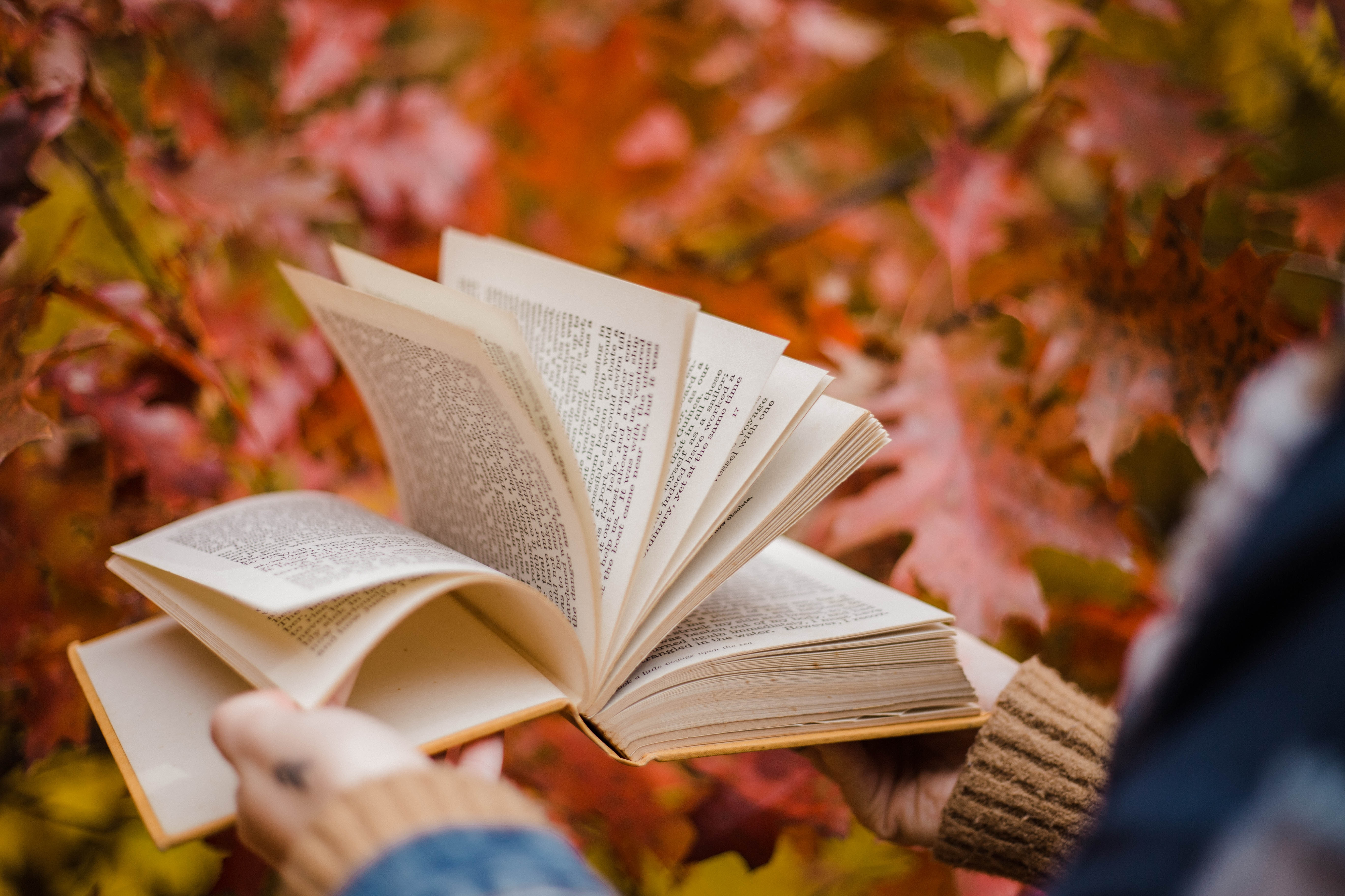 Person flipping through a book with fall leaves in the background.